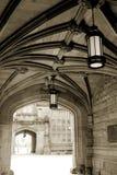 普林斯顿大学 库存照片