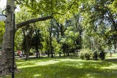 普罗夫迪夫,保加利亚- 2017年6月10日:沙皇西梅昂庭院全景在市普罗夫迪夫, 免版税图库摄影