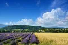 普罗旺斯风景,法国 库存照片