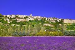 普罗旺斯 开花的lavande领域 免版税库存照片