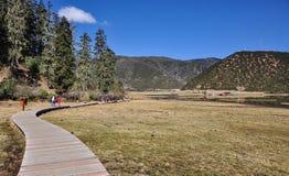 普达措国家公园在云南,中国 免版税图库摄影