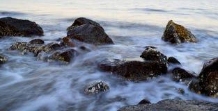 普通岩石和水灰度2 免版税库存照片