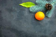 普通话和枝杈圣诞树 免版税库存图片