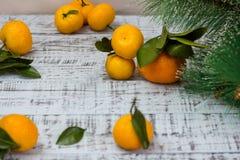 普通话果子和圣诞树分支在土气木背景 库存图片