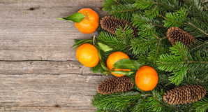普通话果子和圣诞树在木backgroun分支 库存照片