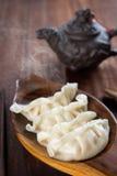 普遍的中国食家饺子 库存照片