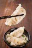 普遍的亚洲食家饺子汤 库存照片
