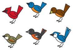 普遍的鸟 库存例证