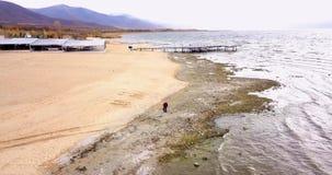 普雷斯帕湖在马其顿在11月,寄生虫摄影 免版税库存照片