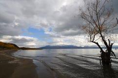 普雷斯帕湖 免版税库存照片