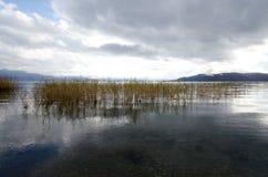普雷斯帕湖 免版税库存图片