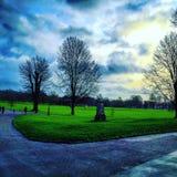 普雷斯顿公园英国好的视图树 免版税图库摄影