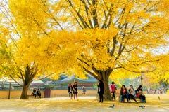 景福宫,韩国- 11月4 :拍照片的游人 免版税库存照片
