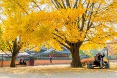 景福宫,韩国- 11月4 :拍照片的游人 库存照片
