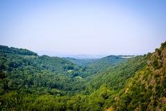 景色问题的在远足期间的frensh森林 免版税库存图片