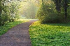 晴朗公园的路径 库存照片