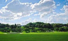 晴朗多云草甸天空的夏天 库存图片