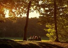 晴朗日的公园 库存图片