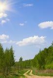 晴朗日的夏天 免版税库存图片