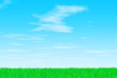 晴朗日的草 库存照片