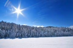 晴朗横向的雪 免版税库存照片