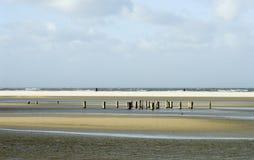 晴朗海滩的schiermonnikoog 免版税库存图片
