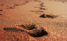 晴朗海滩金黄的沙子 免版税库存图片