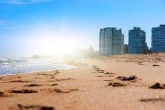 晴朗海滩金黄的沙子 库存图片