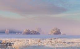 晴朗的冬天风景 图库摄影