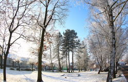 晴朗的冬日 库存照片