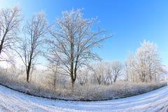 晴朗的冬日 免版税图库摄影