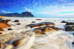 晴朗的海景题材 免版税图库摄影