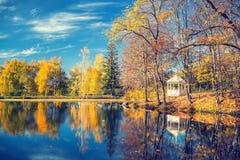 晴朗的秋天在湖的公园 库存图片