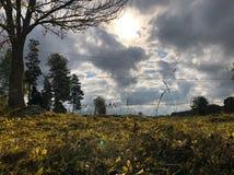晴朗的秋天 图库摄影
