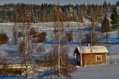 晴朗的风景在寒冷冬天天 免版税库存照片