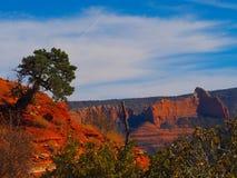 晴朗的Sedona天:红色岩石和蓝天 免版税图库摄影
