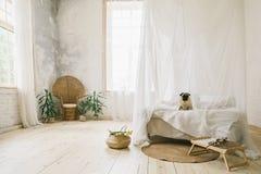 晴朗的Skandinavian样式内部卧室 木地板,自然材料,狗坐床 库存照片