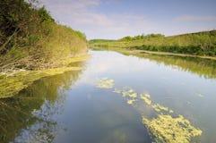 晴朗2天的河 库存图片