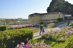水晶宫的庭院 免版税图库摄影
