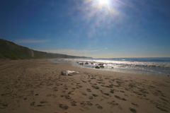 水晶小海湾新港海滨加利福尼亚 免版税库存图片