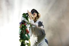 水晶战斗机(电子民间带)在小谎节日的音乐会 库存照片