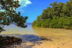 水晶海滩 库存照片