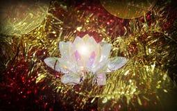 水晶花 库存图片