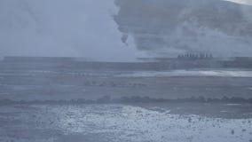 智利人Tatio喷泉 股票视频