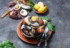智利和奇洛埃岛群岛- Curanto Al霍约,Kuranto南部的著名传统盘  另外海鲜 图库摄影