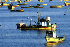 智利港口 库存照片