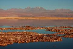 智利盐水湖licancabur火山 库存照片