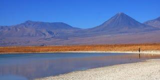 智利盐水湖licancabur火山 库存图片