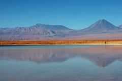 智利盐水湖licancabur火山 图库摄影