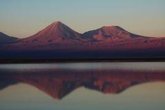 智利盐水湖licancabur火山 免版税库存图片